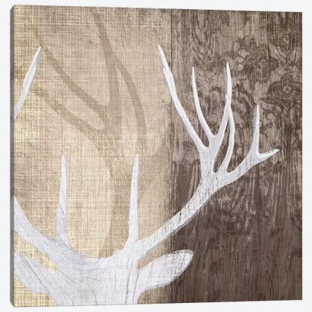 Deer Lodge II Canvas Print #TAN63} by Tandi Venter Canvas Artwork