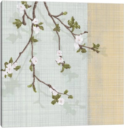 First Sign Of Spring II Canvas Art Print