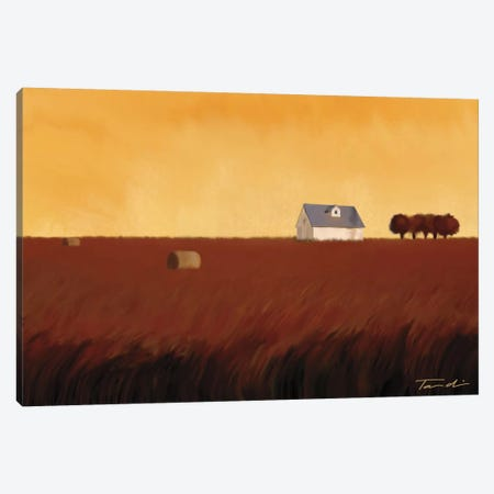 Homeland I Canvas Print #TAN94} by Tandi Venter Canvas Wall Art