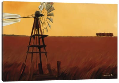 Homeland II Canvas Art Print