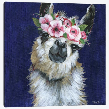 Lady Llama Canvas Print #TAV113} by Tava Studios Canvas Print
