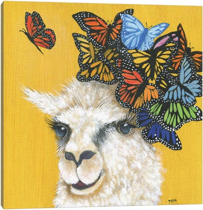 Llama and Butterflies Canvas Art Print