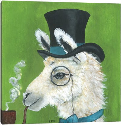 Llama and Pipe Canvas Art Print