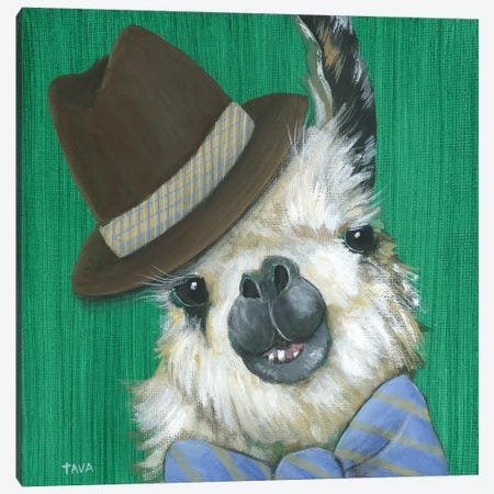 Llama Gentleman Canvas Print #TAV118} by Tava Studios Art Print