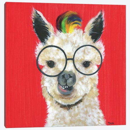 Llama Rockstar Canvas Print #TAV120} by Tava Studios Canvas Artwork