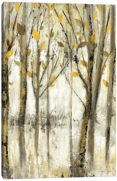 See the Light Canvas Art Print