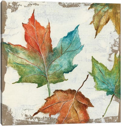 Fall Leaves Canvas Art Print