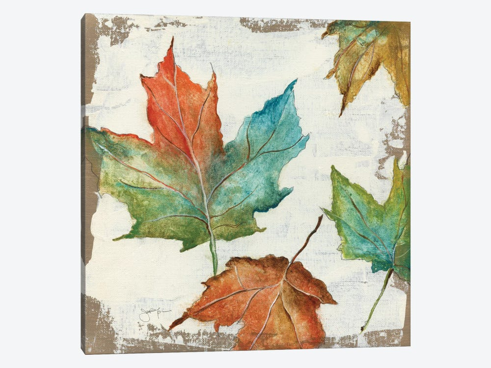 Fall Leaves by Tava Studios 1-piece Canvas Artwork
