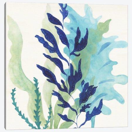 Blue Coral II Canvas Print #TAV131} by Tava Studios Canvas Art Print
