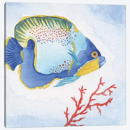 Galapagos Fish I Canvas Print #TAV137} by Tava Studios Canvas Art