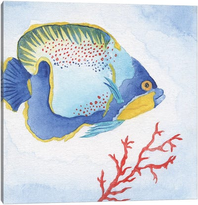Galapagos Fish I Canvas Art Print