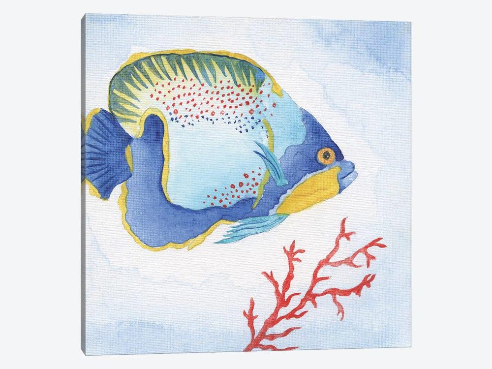 Galapagos Fish I by Tava Studios 1-piece Canvas Artwork