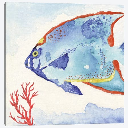 Galapagos Fish II Canvas Print #TAV138} by Tava Studios Canvas Print
