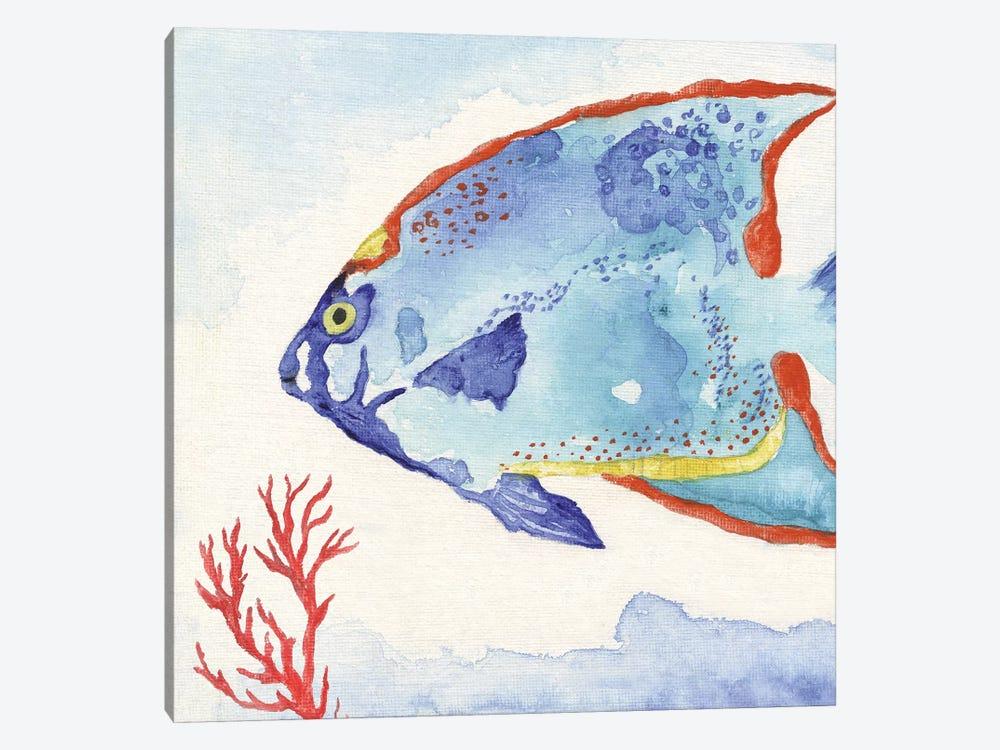 Galapagos Fish II by Tava Studios 1-piece Art Print