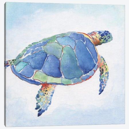 Galapagos Sea Turtle I Canvas Print #TAV139} by Tava Studios Art Print