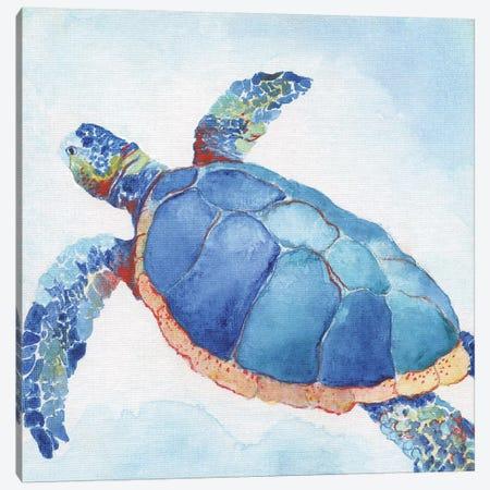 Galapagos Sea Turtle II Canvas Print #TAV140} by Tava Studios Canvas Art