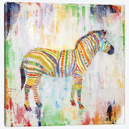 Magical Zebra Canvas Print #TAV144} by Tava Studios Canvas Print