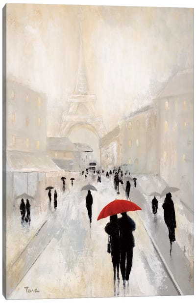 Misty In Paris Canvas Art Print