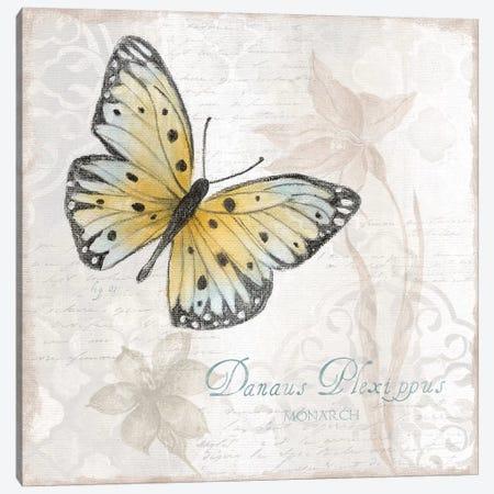 Postcard Butterfly I Canvas Print #TAV179} by Tava Studios Canvas Print