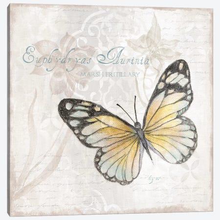 Postcard Butterfly II Canvas Print #TAV180} by Tava Studios Canvas Art