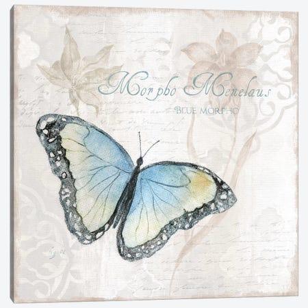 Postcard Butterfly III Canvas Print #TAV181} by Tava Studios Canvas Wall Art