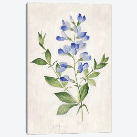 Blue Botanical II Canvas Print #TAV194} by Tava Studios Canvas Wall Art