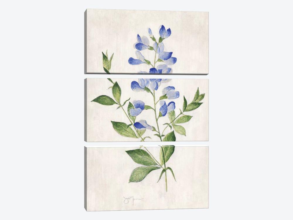 Blue Botanical II by Tava Studios 3-piece Canvas Print