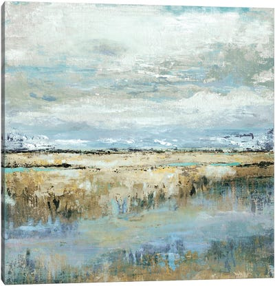 Coastal Marsh Canvas Art Print