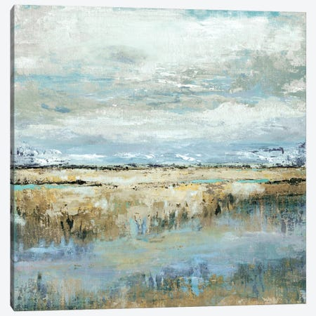 Coastal Marsh Canvas Print #TAV19} by Tava Studios Canvas Print