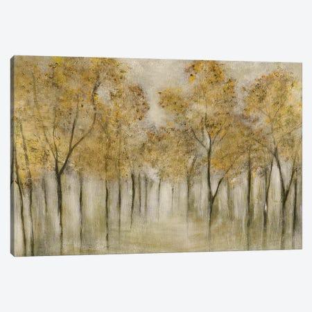 Golden Spring Canvas Print #TAV222} by Tava Studios Art Print