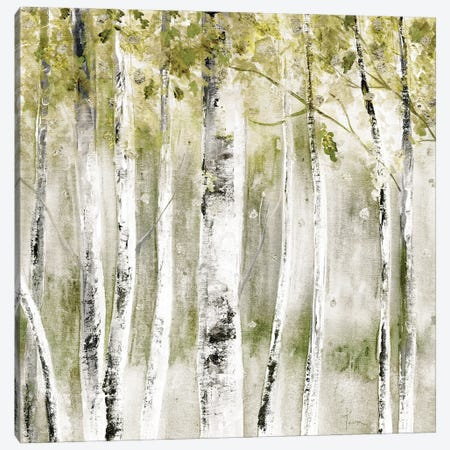 A Fall Day Canvas Print #TAV235} by Tava Studios Canvas Print