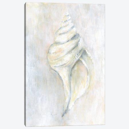 Soft Shell I Canvas Print #TAV247} by Tava Studios Canvas Wall Art