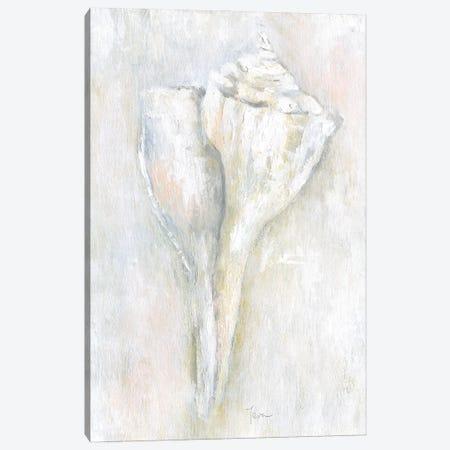 Soft Shell II Canvas Print #TAV248} by Tava Studios Canvas Print