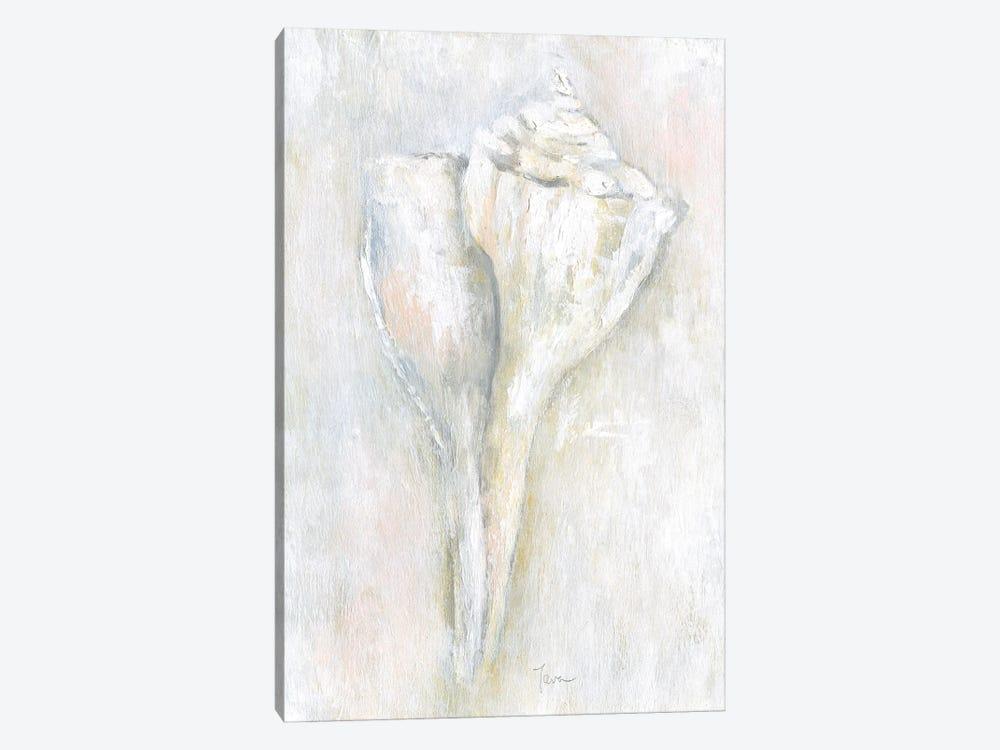 Soft Shell II by Tava Studios 1-piece Canvas Art