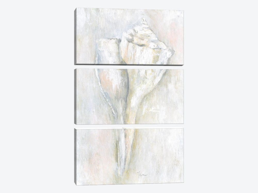 Soft Shell II by Tava Studios 3-piece Canvas Artwork