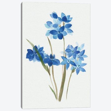 Blue Blossom Botanical I Canvas Print #TAV255} by Tava Studios Art Print