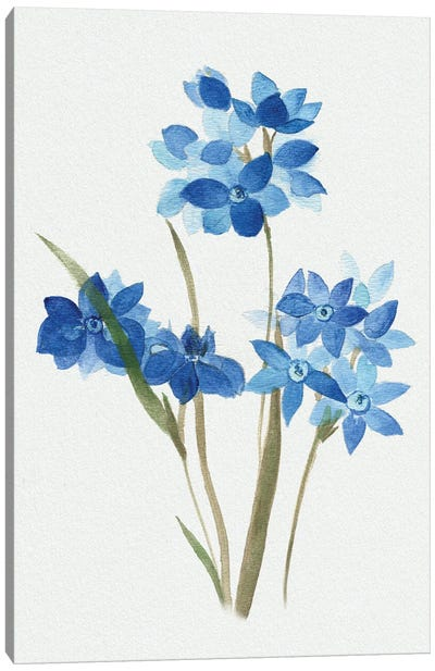 Blue Blossom Botanical I Canvas Art Print