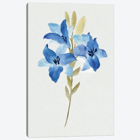 Blue Blossom Botanical III Canvas Print #TAV257} by Tava Studios Art Print