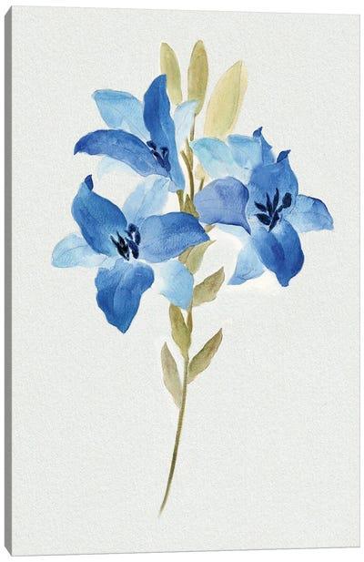 Blue Blossom Botanical III Canvas Art Print