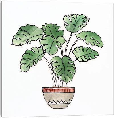Boho Greenery II Canvas Art Print