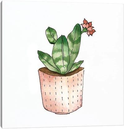 Boho Greenery IV Canvas Art Print