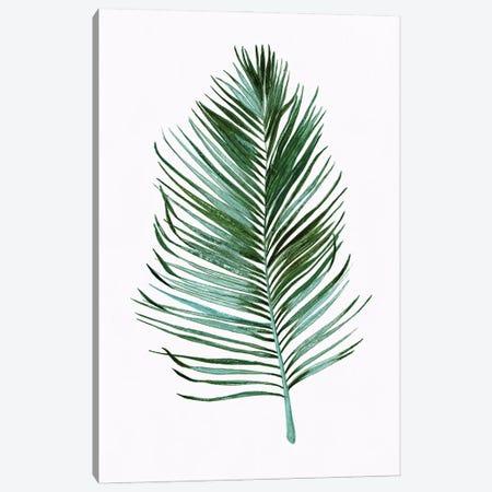 Sage Frond I Canvas Print #TAV269} by Tava Studios Art Print