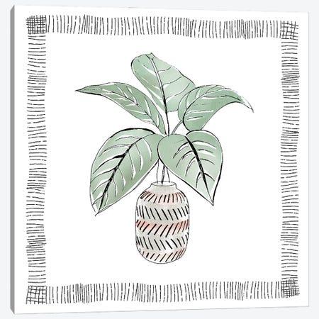 Zebra Plant Canvas Print #TAV279} by Tava Studios Canvas Artwork
