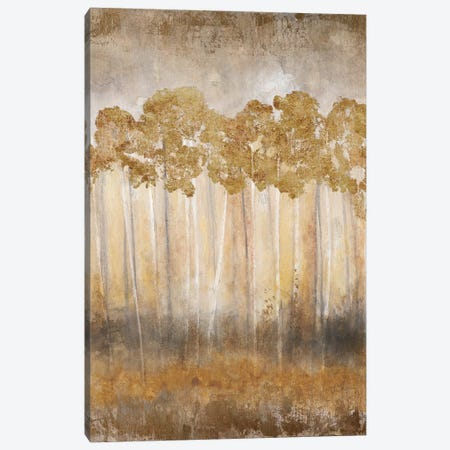 Golden Horizon Canvas Print #TAV32} by Tava Studios Canvas Print