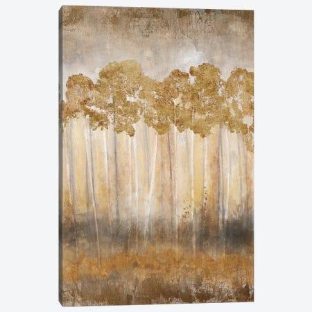 Golden Horizon Canvas Print #TAV32} by Tava Studios Canvas Print