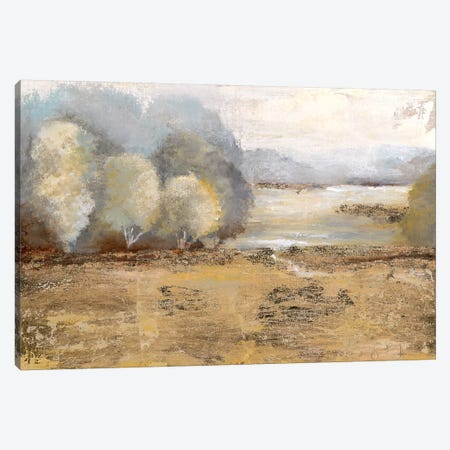 Misty Golden Morning Canvas Print #TAV40} by Tava Studios Canvas Artwork