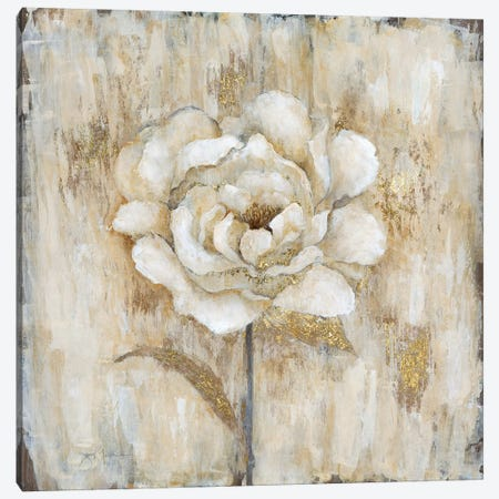 Venetian Gold Botanical I Canvas Print #TAV45} by Tava Studios Canvas Art Print