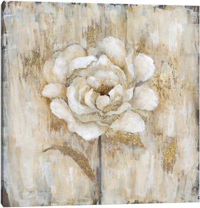 Venetian Gold Botanical I Canvas Art Print