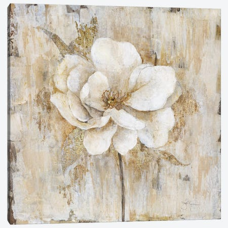 Venetian Gold Botanical II Canvas Print #TAV46} by Tava Studios Canvas Art Print
