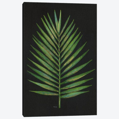 Midnight Palm Canvas Print #TAV53} by Tava Studios Art Print